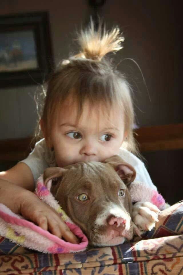 Too cute - little girl and pit bull puppy