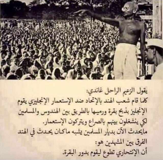 الانتحاري ودور البقرة غاندي Leader Quotes Quotes Words