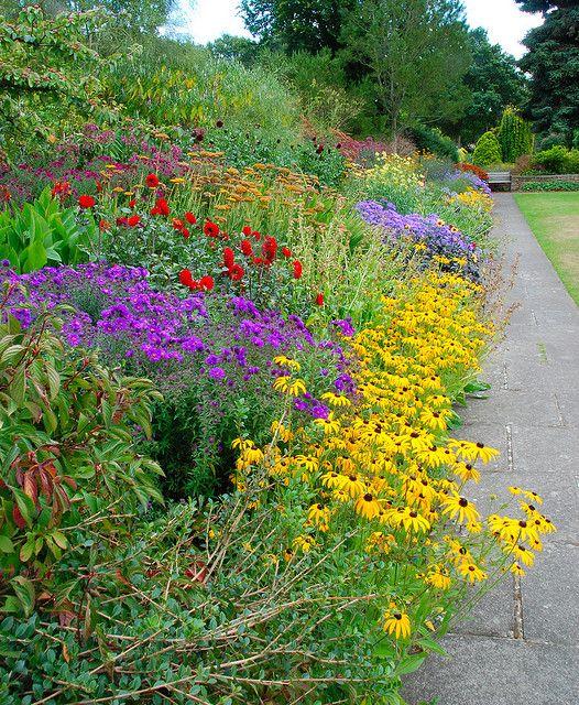 Border Garden!