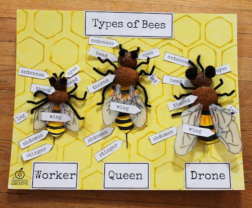 bee-craft-idea-for-kids.png 500 × 412 pixlar