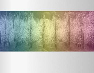 Picture of trees Microsoft PowerPoint Templates