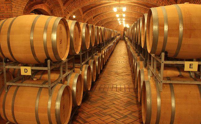 Vinhos na Serra Gaúcha, RS Brasil: Bento Gonçalv,  Cask, Barrels