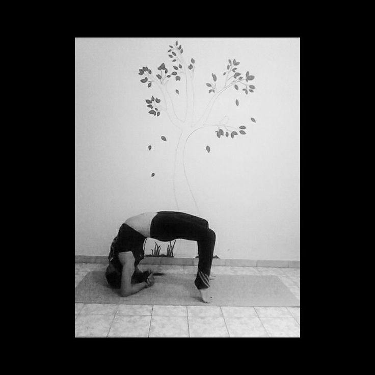 #asana #urdhvadhanurasana #yogagirl #yoga #yogi #yogavenezuela