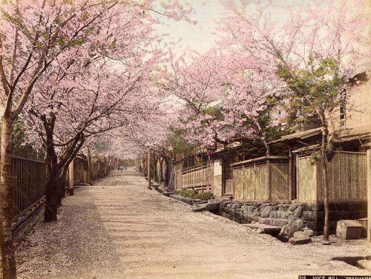 Japon... :)