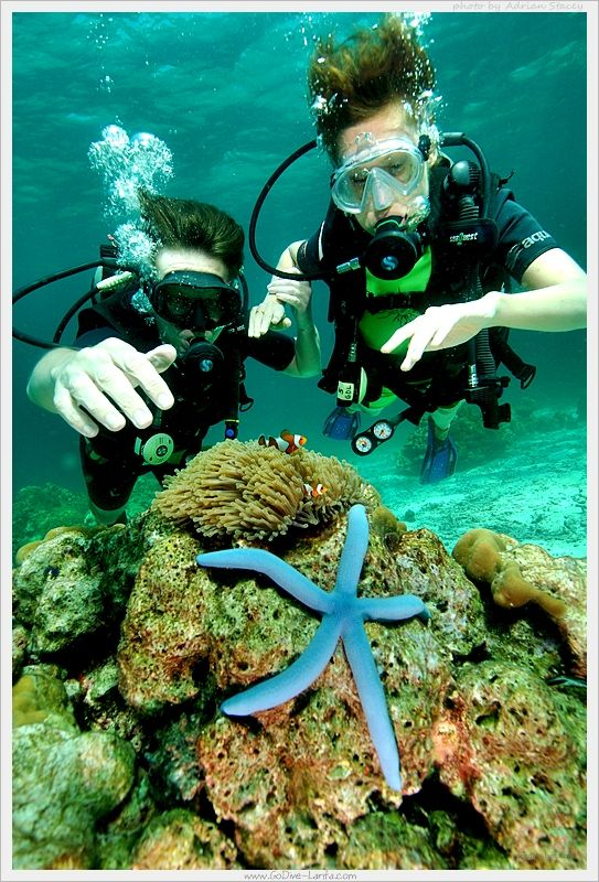 Scuba Diving with Go Dive Lanta, Ko Lanta, Krabi, THAILAND.