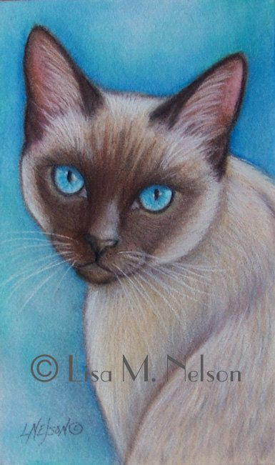 Original Siamese Cat Art Colored Pencil by ArtbyLisaMNelson