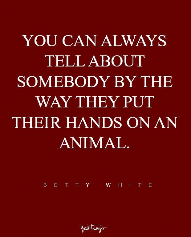 I don't touch animals too much.  I don't like to care for things anymore.