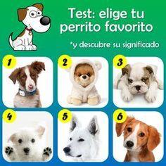 EL TEST DE LOS PERRITOS El perro además de ser compañía leal y el mejor amigo del hombre, también podría reflejar aspectos importantes de tu vida y tu personalidad. Elige tu perrito favorito y a continuación descubre su significado