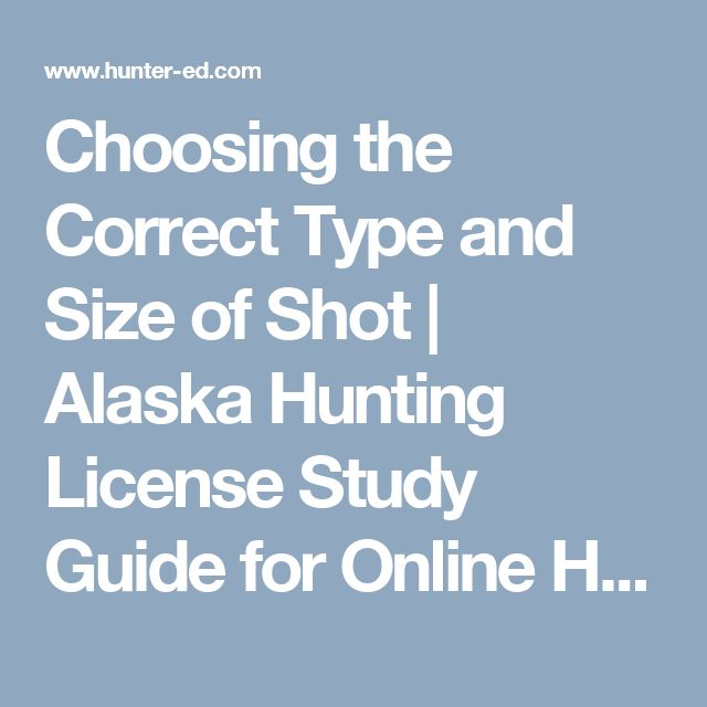 Choosing the Correct Type and Size of Shot | Alaska Hunting License Study Guide for Online Hunting Safety Course