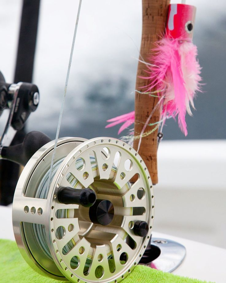 Most Billfish Anglers struggle to look past a Pink popper here in Costa Rica! #queposonthefly #flyfishingquepos #queposflyfishing #sagerods #hatchreels #jackpotsportfishing #flyfishingcostarica