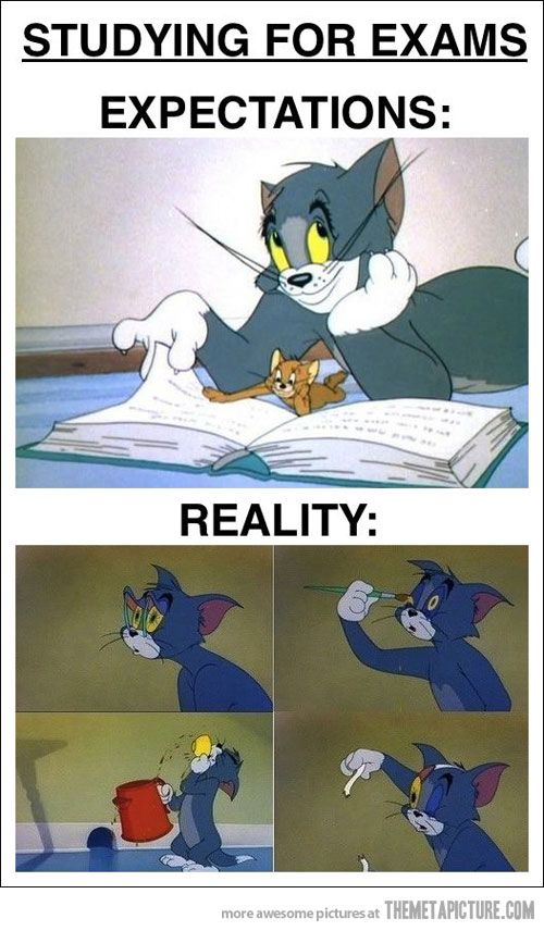 Studying for exams… so true