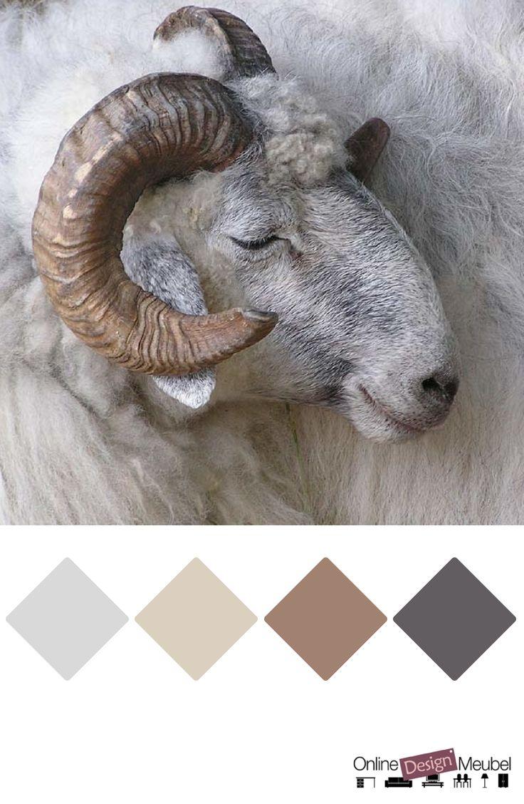 kleurenpalet tinten grijs en bruin | taupe | kleurinspiratie