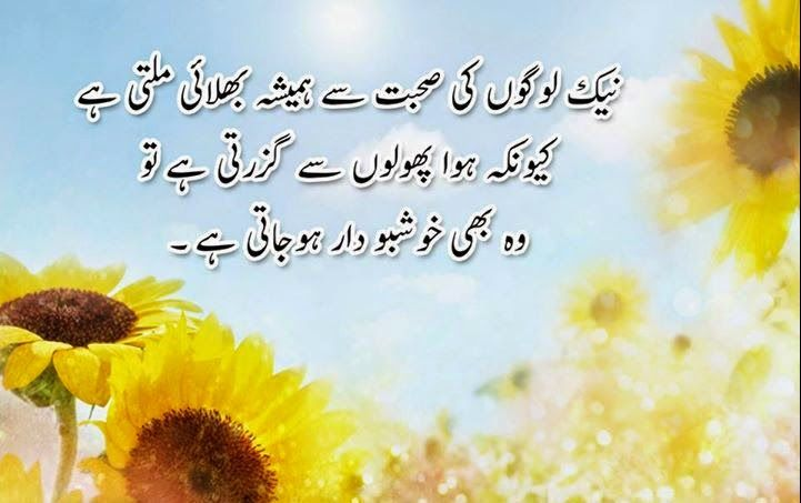 80 best images about powerful urdu quotes on pinterest
