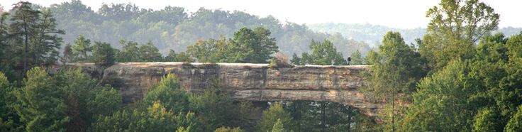 Natural Bridge State Park, KY Fishing, canoe rental, pool ($4/adult,$3/child), and of course the natural bridge. Sky lift available. Flush toilets & electric hook up. $9/night