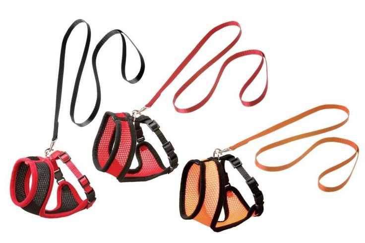 Karlie Harms Cat Harness, 120 cm Length x 15 mm Width, Black/Red -- Continue with the details at the image link. #CatCollarsHarnessesandLeads