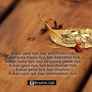 Image result for ngakak kocak quotes