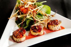 Seared Scallops CK Style- they know a thing or two about presentation!!  http://www.mycarrick.ie/248/Courtyard+Kitchen+Cafe+