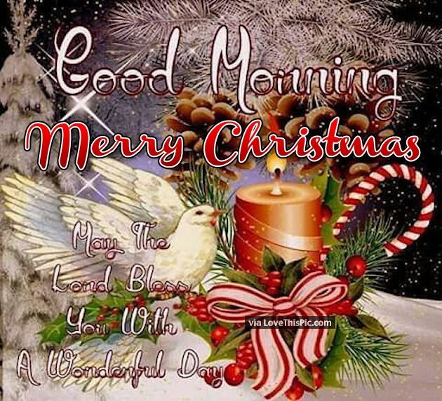 Good Morning Merry Christmas May The Lord Bless You christmas good morning merry christmas christmas quotes seasons greetings religious christmas quotes cute christmas quotes happy holiday christmas quotes for facebook christmas good morning quotes christmas quotes for friends christmas quotes for family good morning christmas quotes