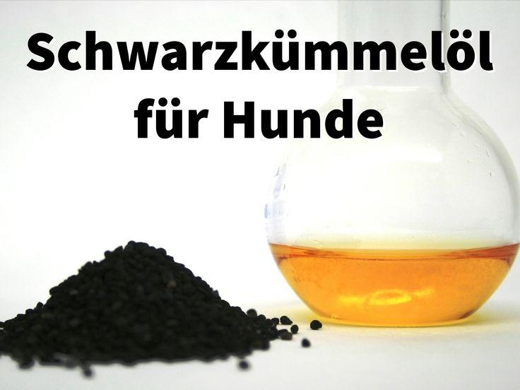 Schwarzkümmelöl Zecken Dosierung