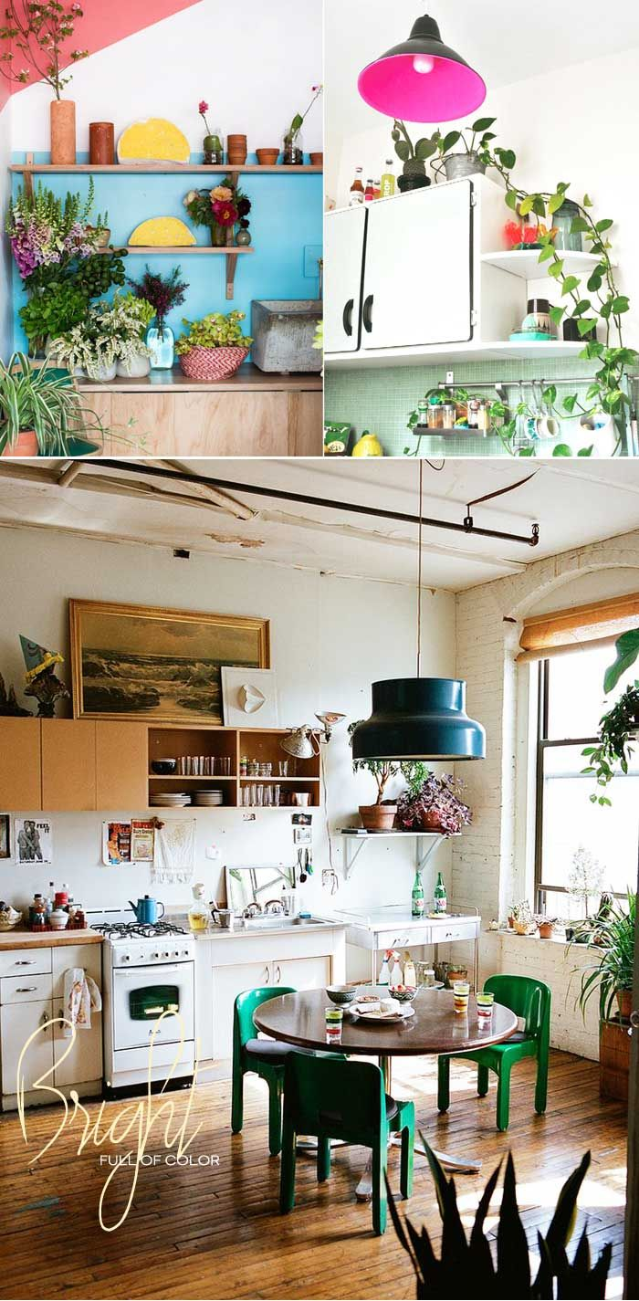 Inspired Ideas of including house plants in your kitchen and dining room | Dine X Design