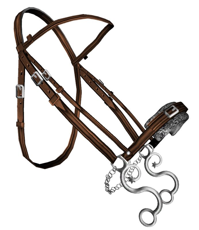 Bitless Bridles - What's the Difference? - LightRider ...