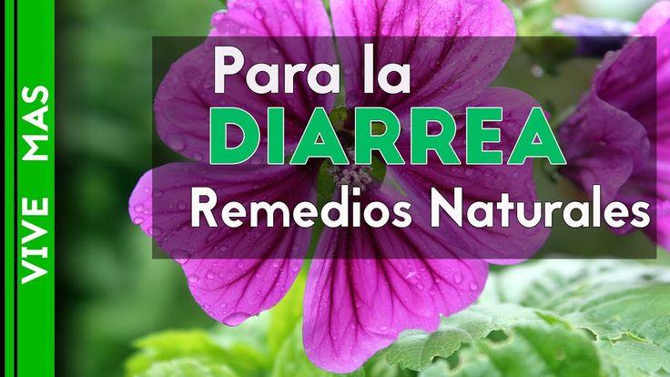 para la diarrea remedios naturales. Yanet Ramirez Naturista