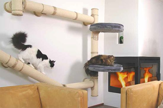 Kattens1 offering an extensive collection of components that use a patent pending floor to ceiling mounting system allowing you to create a totally customized cat climbing system.