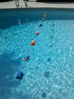 Pool Safety Rope, DIY, except I'd do it from beginning to end, you could color coordinate for holidays or parties