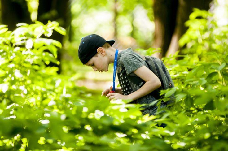 Słyszeliśmy, że nasi studenci w wakacje poszukują przygód i pomysłów na rozwijanie swoich pasji :) A Wy czego szukacie w wakacje?⛵️������✈️ #UniwersytetDzieci #wakacje #wakacjewmiescie #wakacjewolsztynie #wakacjewpelni #dzieci #dziecko #UD #edukacja #kids #science #followme #kidsphoto #dladzieci #student #warszawa #olsztyn #krakow #wroclaw http://butimag.com/ipost/1557990220661371809/?code=BWfF9niDbOh