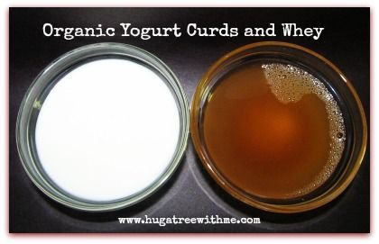 Organic Yogurt Curds and Whey #recipe