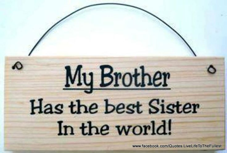 My Brother Has The Best Sister In The World...