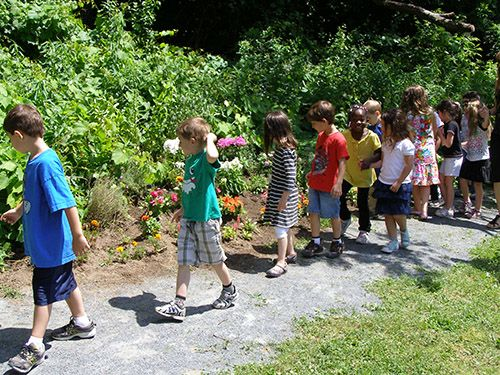 Tips for starting a school nature trail.
