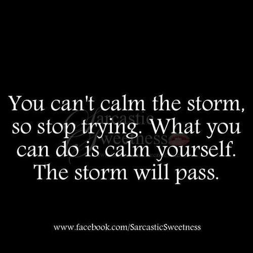 You can't calm the storm so stop trying. What you can do is calm yourself. The storm will pass.   #LifeMakeover  http://makeovercoaching.com/
