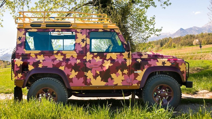 Land Rover Defender Vineyard