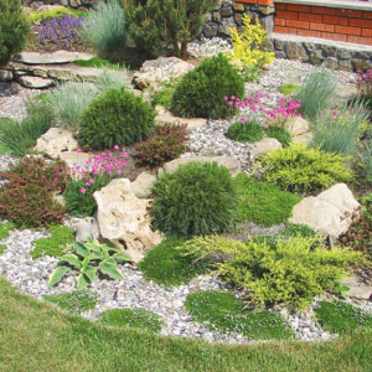 die besten 25+ steingarten anlegen ideen auf pinterest | garten, Gartenarbeit ideen