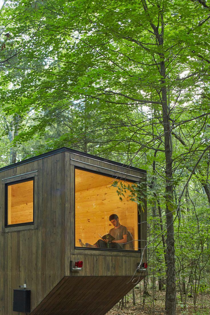 The Maisie Cabin near New York / Getaway