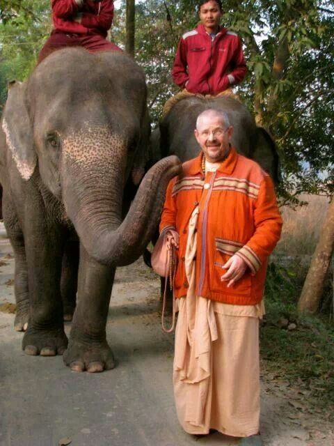 Mayapur elephants