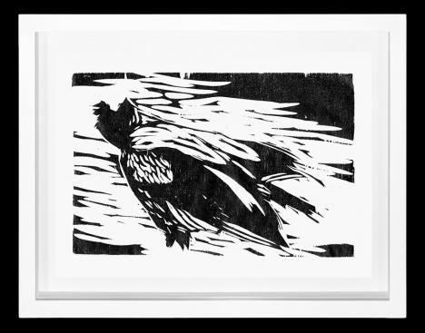 Black Vulture II - Heraldo Candido      Veja outras obras deste artista em nossa galeria de arte online - http://tintaed.com/artistas/heraldo-candido