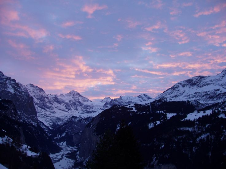 view from #Wengen winter