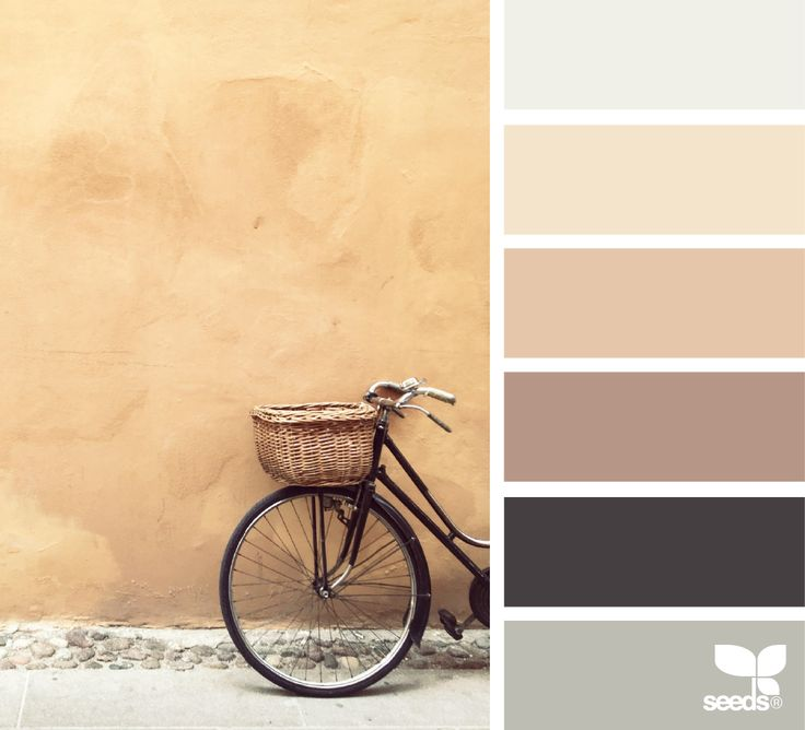 { color cycle } image via: @questoeilmassimo