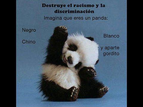 """""""Racismo y Discriminación."""""""