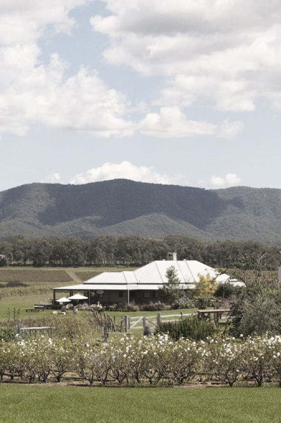 Hanging Tree Wines homestead and reception venue