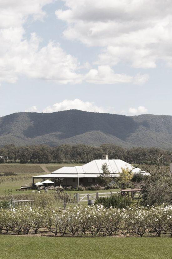 Jane & Scott's Intimate Hunter Valley Country Wedding. Hanging Tree Wine Hunter Valley