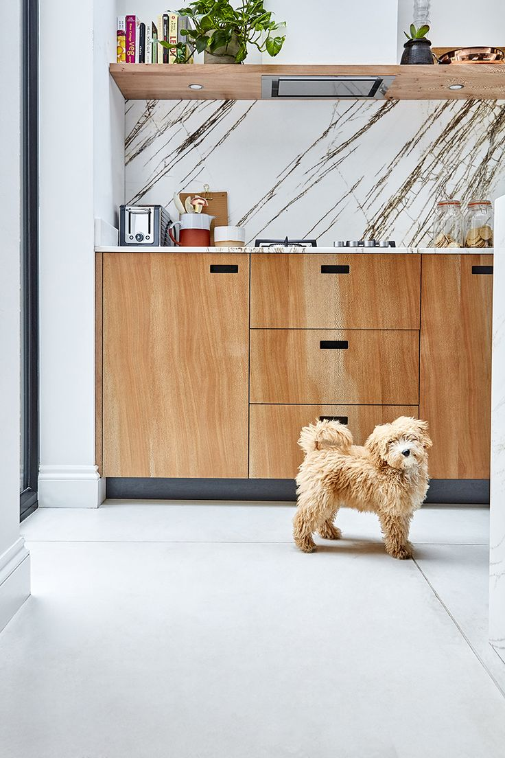 ESSENTIAL KITCHENS & PLUCK LONDON -  Creative Director Amy Powney's adorable cockapoo Roxy enjoys the new kitchen. #motherofpearl #pearlyqueen #roxythedog #interiors #kitchens