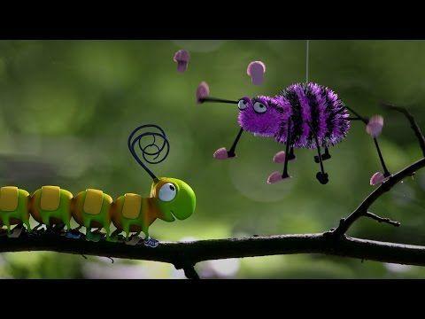 Pigeons - Cute animation cartoon - YouTube
