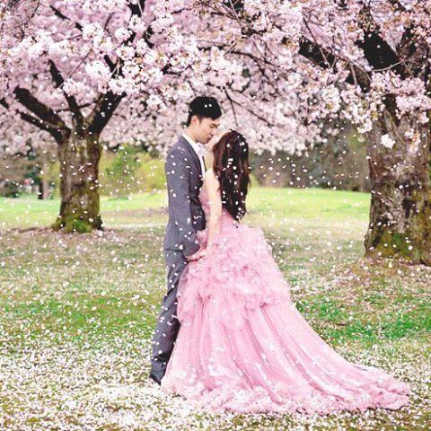 【weddingnews_editor】さんのInstagramをピンしています。 《* * * こんな風に桜シャワーを浴びてみたい💕 * 憧れの桜の中での #ロケーションフォト ✨ * ヘアスタイルがシンプルなので、ピンクの #カラードレス と #桜 の綺麗さが引き立っていてとても素敵ですね🌸✨ * * 桜の季節の #ロケーションフォト 予約はどのスタジオさんも予約が埋まりやすいので、今年の撮影をご希望の方は、予約が可能かどうか早めに確認したほうが安心ですよ💕💕 * * * また最近搭載されたスマホアプリ・ウェディングニュースの《予約》ページからも、今年の桜シーズンの #前撮り #後撮り 予約ができますよ✨ * (価格28000円〜関東・関西・富士周辺、IG紹介割あり) * #海外挙式 国内 #リゾートウェディング でのロケフォトの撮影、結婚式当日の撮影予約もできますので、是非チェックしてみてくださいね💕💕 * * photo by @karizma.photography * * * ❣お知らせ❣…