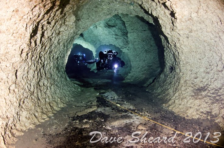 florida cave diving | Thread: Some photos from our Florida cave diving