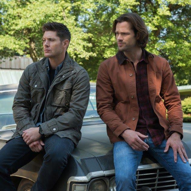 Os irmãos Winchester devem passar boa parte da 14ª temporada de  Supernatural separados. Após a confissão… | Supernatural seasons, Jared  padalecki, Supernatural star
