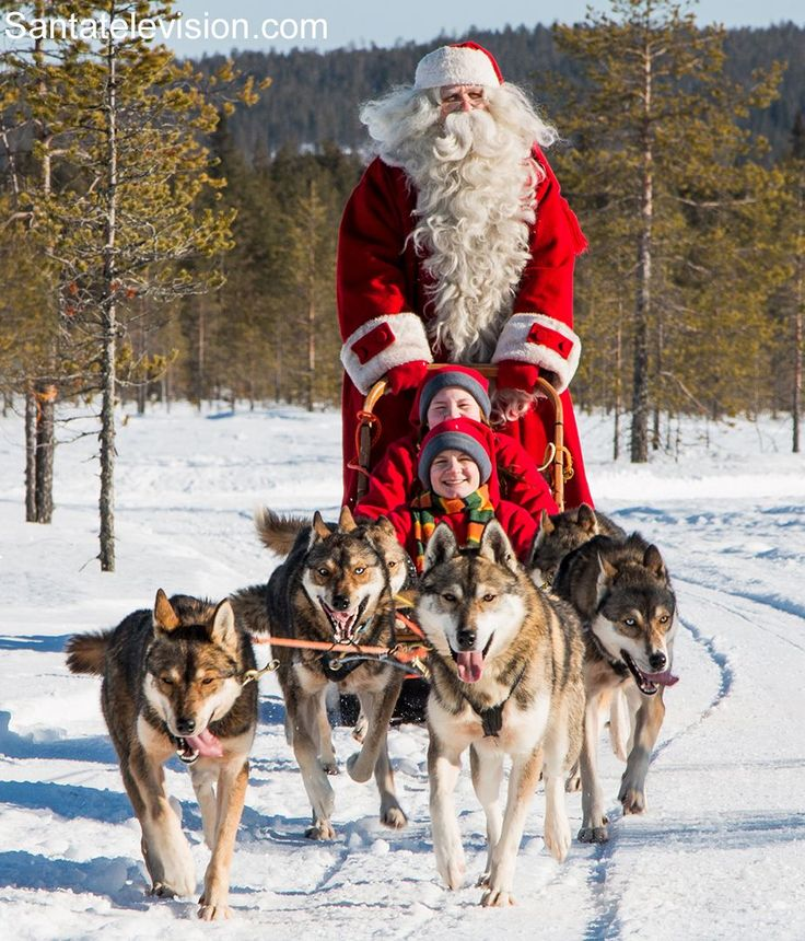 Santa Claus and husky dogs in Rovaniemi in Lapland