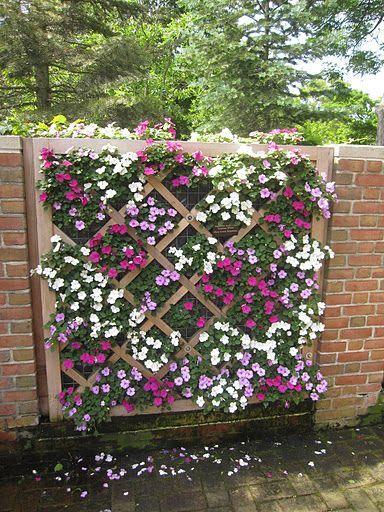 jardim-vertical-suspenso-inverno-ideias-24 Guia com 47 ideias para seu jardim vertical dicas faca-voce-mesmo-diy jardinagem madeira quintais Mais